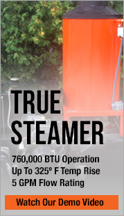 true steam cleaner